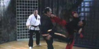 Shaolin Kempo Karate Grandmaster Fred Villari in Action