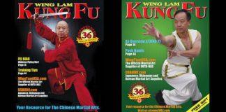 Wing Lum Kung Fu Magazine