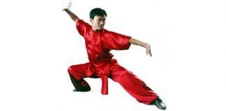Changquan Long-Range Boxing
