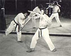 Bob Tadashi
