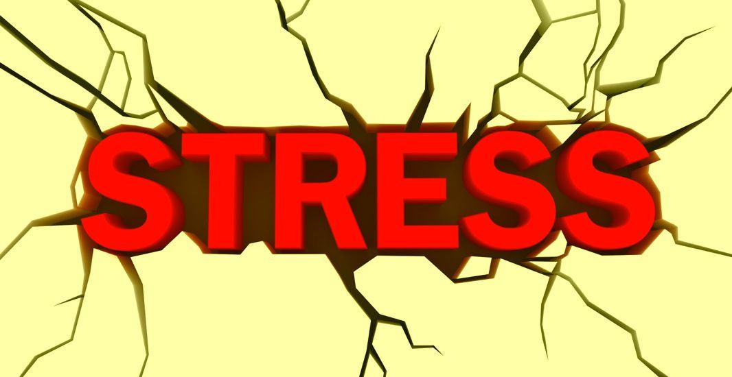 Dojo Medicine: Stress