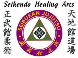 Seikendo Healing Arts