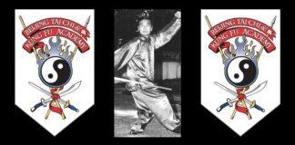 Daniel Wang Tai Chi Styles