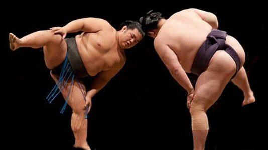 Yapay zeka sumo öğrendi