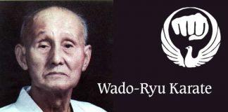 Wado-Ryu Karate