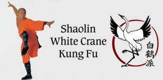 Shaolin White Crane Kung Fu