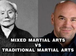 Mixed Martial Arts Vs Traditional Martial Arts