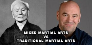 Mixed Martial Arts Vs Traditional Martial Arts