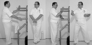 Ron Shively Naihanchi's Drills