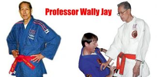 Professor Wally Jay