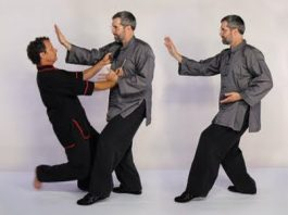 Tai Chi Is Just Ordinary Boxing