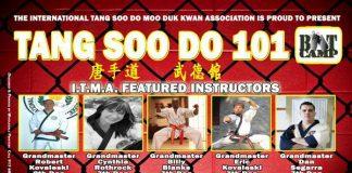 Tang Soo Do 101