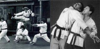 Terry L Wilson Flying Side Kick over Benny Urquidez