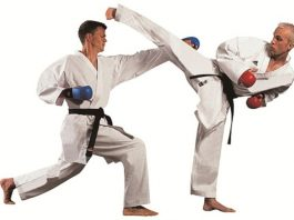 Sports Karate and Traditional Fighting