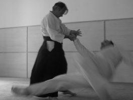Luca Cavallotto's Aikido in Berlin