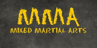 Welcome to the World of the MMA Warrior