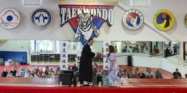 Bai Si Tea Ceremony for Grand Master Rondy McKee