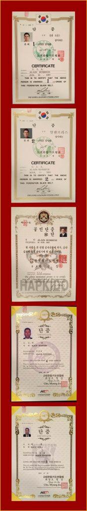 Alain Burrese Hapkido Certificates.