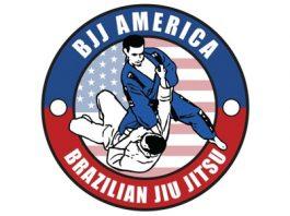 BJJ American Brazilian Jiu Jitsu Curriculum