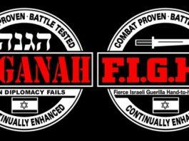 Haganah and F.I.G.H.T.