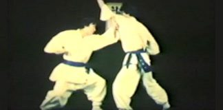 Han-Pul Korea Martial Arts