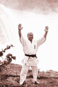 Martial Arts Exercises