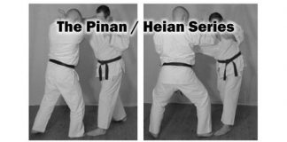 The Pinan / Heian Series