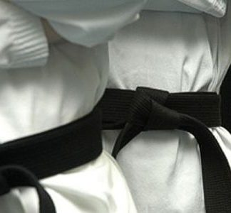 Traditional Karate?