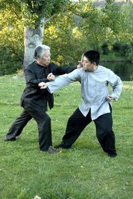 Fu Sheng Yuan Teaching