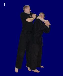 Basic Straight Armlock