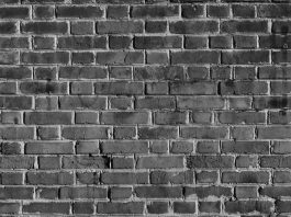 Wall of Silence: Vital Points in Kata