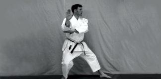 Discovering Bunkai in Kata
