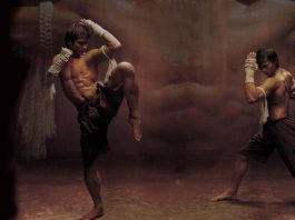 Power of a Muay Thai Kick