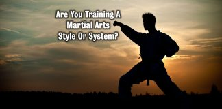 Martial Arts Style Or System