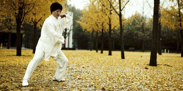 Lu Yan Wushu