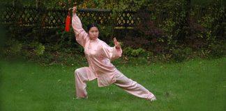 Li Jing Wushu