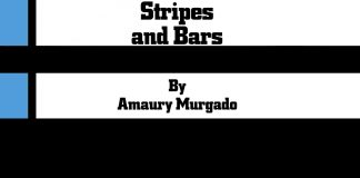 Stripes and Bars by Amaury Murgado