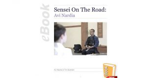 Sensei on the Road: Avi Nardia