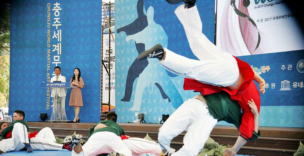 Hasil gambar untuk chungju world martial festival