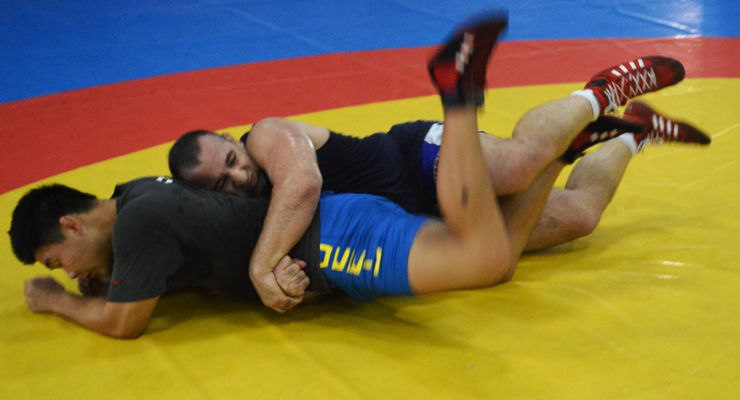 Parallel Development of Chinese and Western Wrestling
