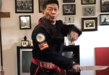 Harry Mok Weapon Training
