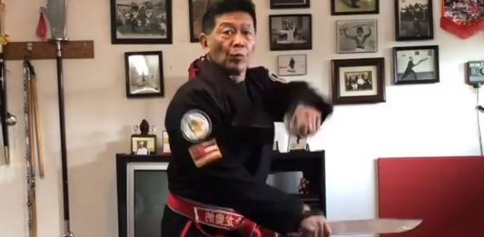 Harry Mok Weapon Training