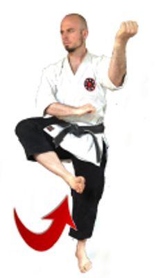 The Neihanchi leg sweep
